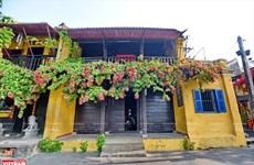 [Foto] Conocida ciudad turística de Hoi An en medio de COVID-19