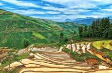 [Foto] Terrazas de arroz en Y Ty, Lao Cai