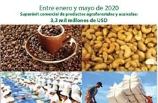 [Info] Superávit comercial de productos agroforestales y acuícolas supera los tres mil millones de dólares