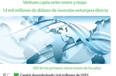 [Info] Vietnam capta entre enero y mayo 14 mil millones de dólares de IED