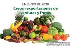 [Info] Exportaciones de verduras y frutas de Vietnam aumentan tras meses de caída