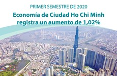 [Info] Economía de Ciudad Ho Chi Minh registra un leve crecimiento