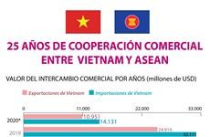 [Info] 25 AÑOS DE COOPERACIÓN COMERCIAL ENTRE  VIETNAM-ASEAN