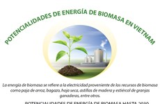 Potencialidades de energía de biomasa en Vietnam