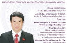 Presidente del Consejo de Asuntos Étnicos de la Asamblea Nacional