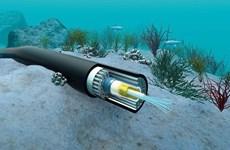 Finalizarán reparación de cables submarinos de internet de Vietnam