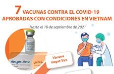 Siete vacunas contra el COVID-19 aprobadas con condiciones en Vietnam