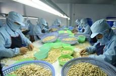 Vietnam reporta superávit comercial de productos agroforestales y pesqueros