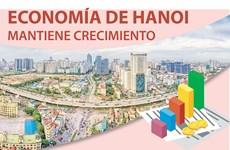 Economía de Hanoi mantiene crecimiento