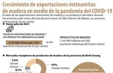 Crecimiento de exportaciones vietnamitas  de madera en medio de la pandemia del COVID-19