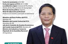 Tran Tuan Anh, nuevo jefe de la Comisión de Asuntos Económicos del Comité Central del PCV