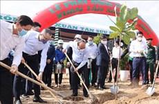 Vietnam se fija la meta de plantar mil millones de árboles