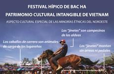 Festival hípico de Bac Ha - Patrimonio cultural intangible de Vietnam