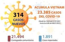 Actualización de los casos de coronavirus en Vietnam