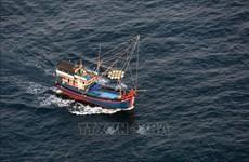 Vietnam aplica sanciones drásticas a responsables de pesca ilegal