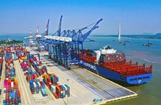 Vietnam por desarrollar seis clústeres portuarios