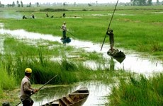 Región del suroeste de Vietnam refuerza cooperación con Australia y Alemania