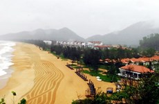 Zona económica de Vietnam atrae 156 millones de dólares en 2016