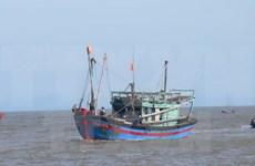 Forman cooperativa juvenil en Ha Tinh para ayudar a pesca en alta mar