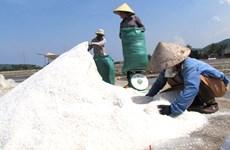 Vietnam se esfuerza por desarrollar industria salinera en Sa Huynh
