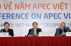 Año APEC 2017, foco de actividades externas de Vietnam