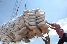 Exportadores vietnamitas de arroz obtienen acceso al mercado chino