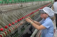 Estados Unidos encabeza mercados de exportación de Vietnam