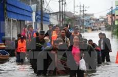 Al menos 12 muertos por inundaciones en Sur de Tailandia