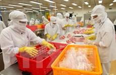 Empresas de Vietnam ante riesgos en comercio internacional