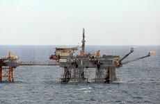 Vietnam coopera con grupo estadounidense Halliburton en exploración de petróleo