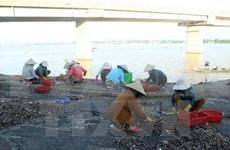 Vietnamitas afectados por incidente ambiental de Formosa recibirán más compensaciones