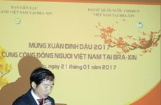 Celebran vietnamitas en Brasil fiestas del Nuevo Año Lunar