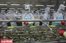 Minh Phu – gran marca de productos acuáticos de Vietnam