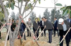 Presidente vietnamita urge a impulsar la plantación de árboles