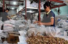 TLC brindará dos corrientes de capitales europeos a Vietnam, dice experto