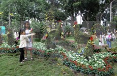 Más de 800 mil personas asistieron a Festival de Flores en Ciudad Ho Chi Minh