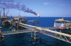 Grupo ruso invertirá en proyecto de gas en Vietnam