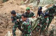 Indonesia: Al menos 12 muertos por deslizamientos de tierra