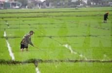 Provincia vietnamita fomenta apoyo a agricultores ante cambio climático