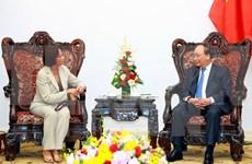 Vietnam promete condiciones óptimas para empresas de Timor Leste