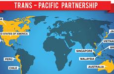 Inversión extranjera en Vietnam no será afectada si el TPP fracasa