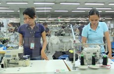 Japón es segundo mayor inversor en provincia vietnamita
