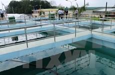 Banco Mundial ofrece préstamo a proyecto de agua limpia en provincia vietnamita