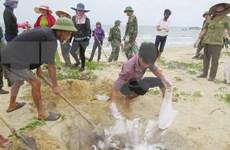 Revisan préstamos por impacto de incidente ambiental en provincias costeras de Vietnam