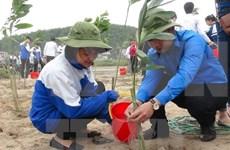 Proyecto estadounidense ayuda a proteger medioambiente en Vietnam