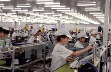 Disminuye el número de nuevas empresas creadas en Vietnam