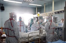 Detectan casos de gripe aviar en zona china adyacente a Vietnam