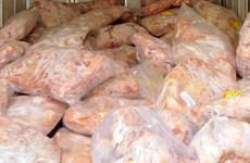 Vietnam suspende importación de aves de EE.UU para contener gripe aviar