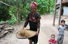 Thanh Hoa avanza en reducción sostenible de la pobreza