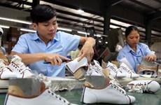 Urgen a aumentar suministro nacional de materias primas para sector de calzado